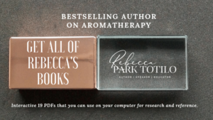 USB Books | Rebecca Park Totilo